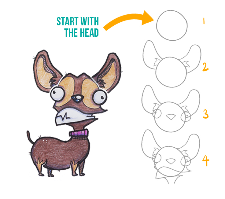 how to draw a cartoon chihuahua discover cartooning discover
