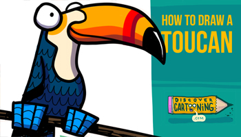 How to Draw a Cartoon Toucan Thumbnail