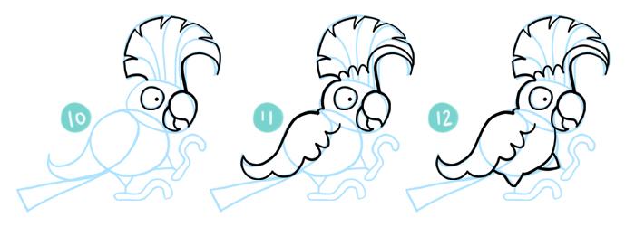 How To Draw A Cartoon Cockatoo Steps 10 - 12