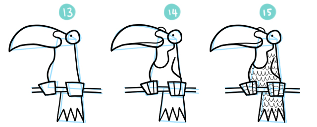 How To Draw A Cartoon Toucan Steps 13 to 15
