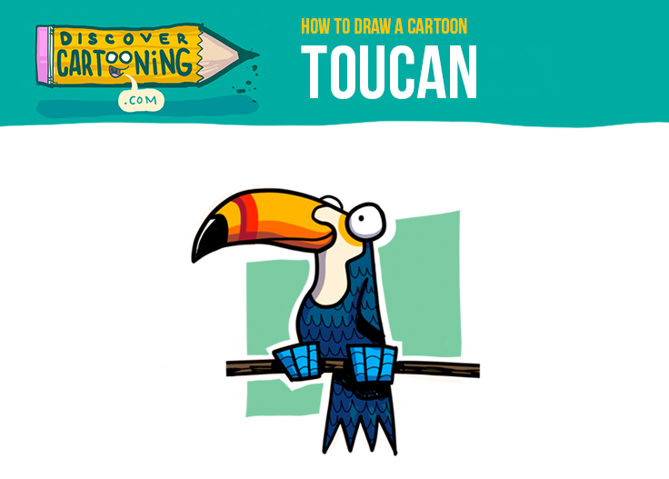 How To Draw A Cartoon Toucan