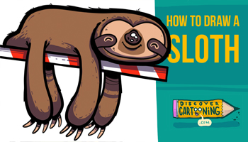 How To Draw A Cartoon Sloth Thumb
